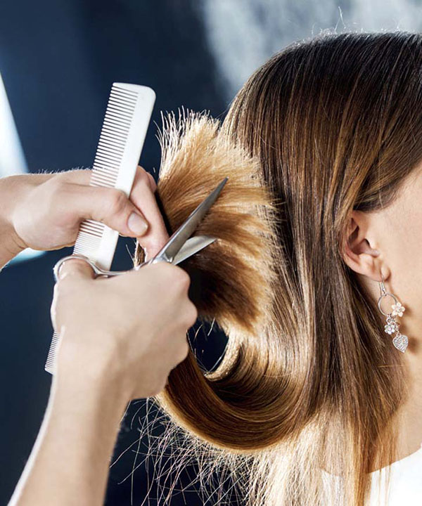 Интересные картинки парикмахера